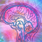 que son las ondas cerebrales-amalia martinez